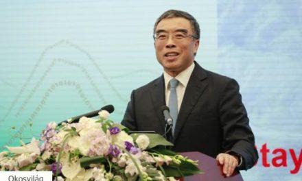 Csak lassította az amerikai tiltás a Huawei növekedését