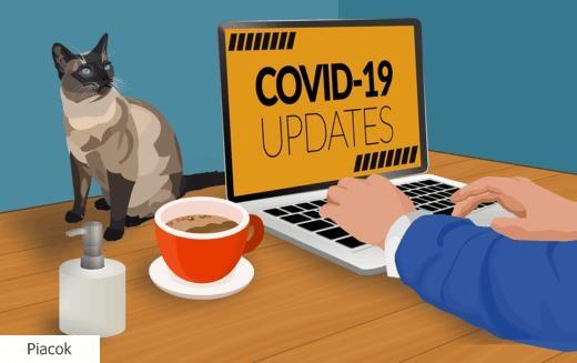 Koronavírus hatása az IT-ra