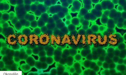 Mobilappokkal is küzdhetnénk a koronavírus ellen?